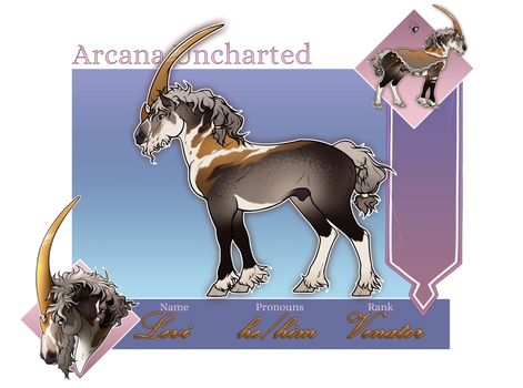 Arcana Uncharted | Levi | Occasus Venator