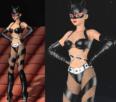 Catwoman Berry style