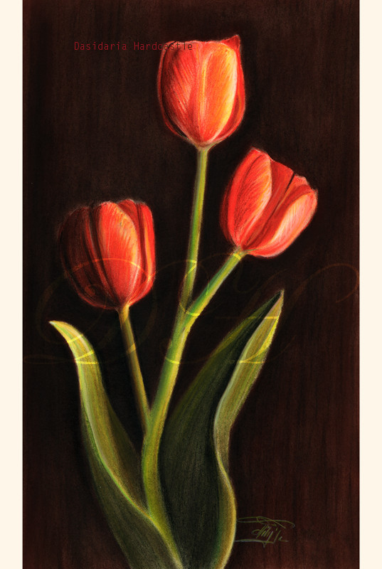3 tulips by dasidaria-art