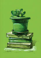 Crassula and books by dasidaria-art