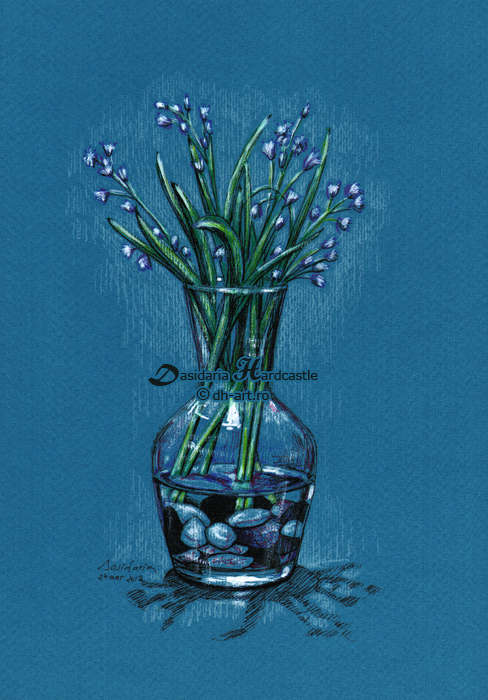 Scilla bifolia by dh6art