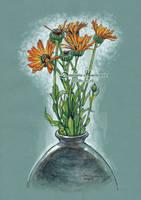 Wild flowers by dasidaria-art