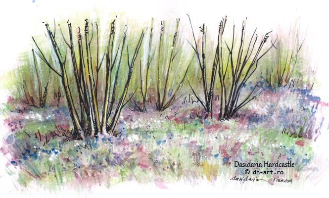 Sketchbook - colors by dasidaria-art