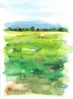 Sketchbook - Marsh by dasidaria-art
