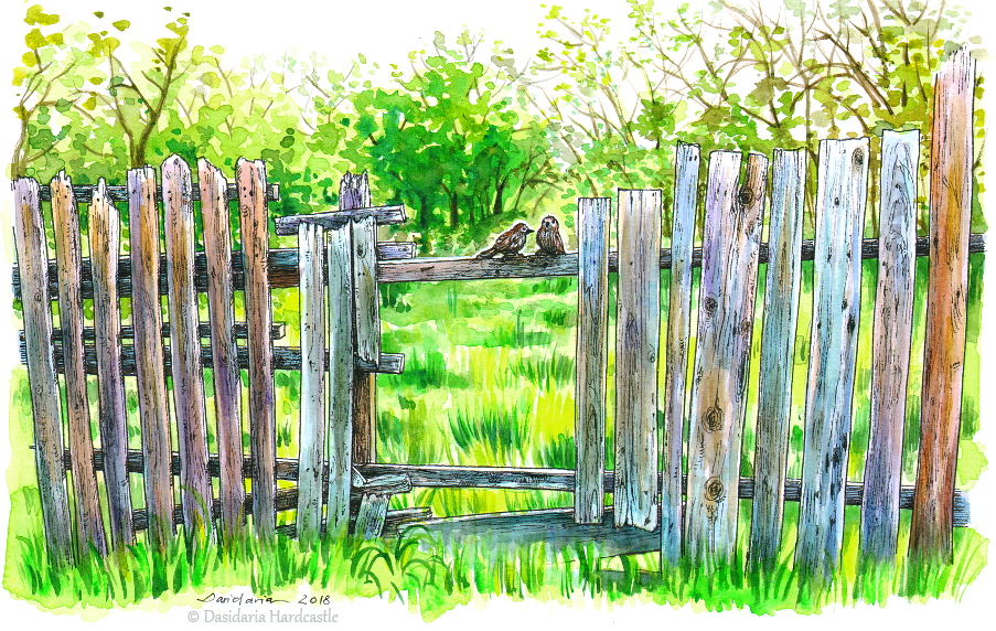 Birds on a fence by dasidaria-art