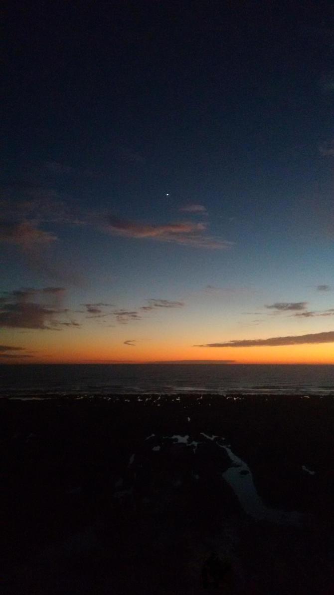 Evening Star By TheCuriousKit On DeviantArt