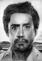 Robert Downey Jr by th3blackhalo
