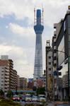 Tokyo Sky Tree Tower, western Japan 2010