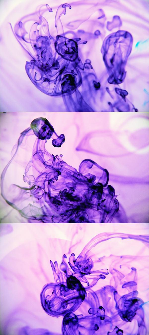 http://fc01.deviantart.net/fs71/f/2010/226/3/c/Colors_IV_by_Deyree.jpg