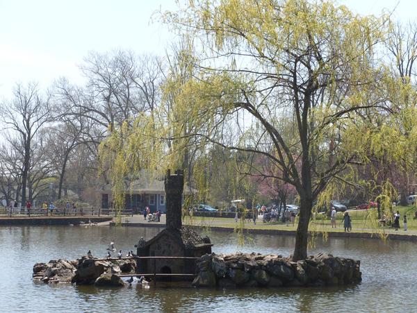 The Duck Hut