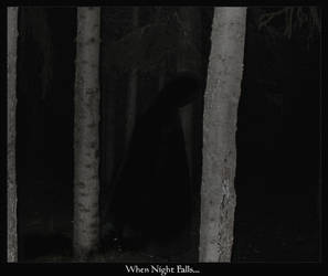 when night.. by Ravenhearted