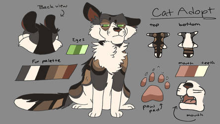 [CLOSED] Cat Adopt // Auction by AlphaDogg777