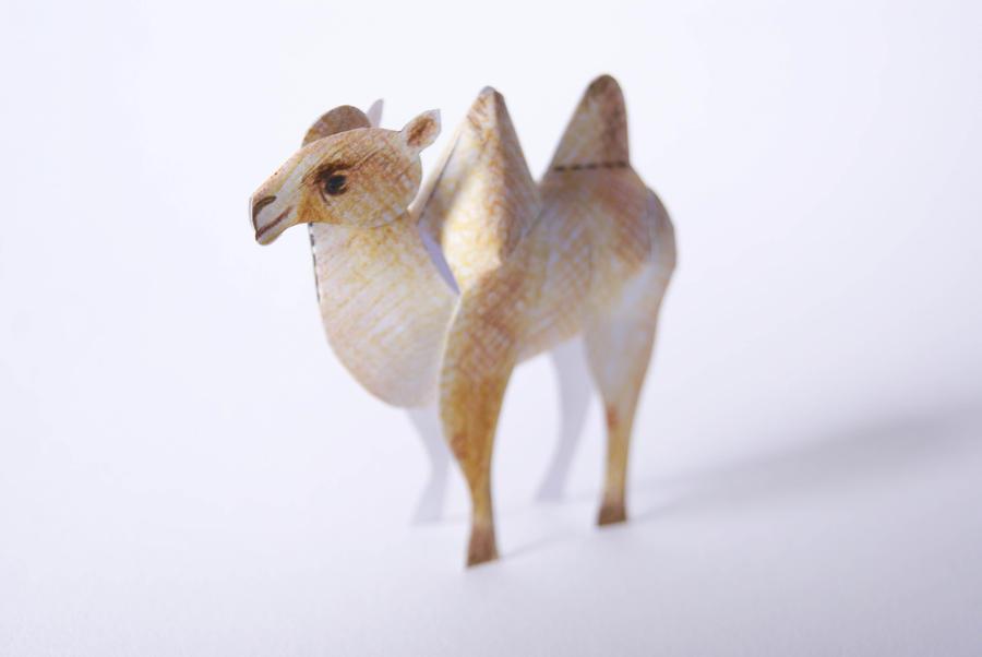 Tiny Paper Zoo - Camel by kamibox