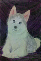 My Lovely Dog by nanaenae