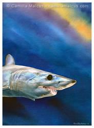 Mako Shark by CamillaMalcus