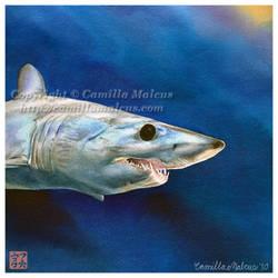 Mako Shark v.2 by CamillaMalcus