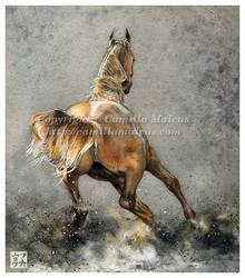 Arabian by CamillaMalcus