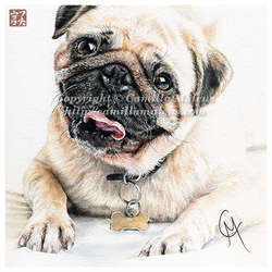 Happy Pug by CamillaMalcus
