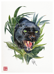 Black Panther (tattoo design) by CamillaMalcus