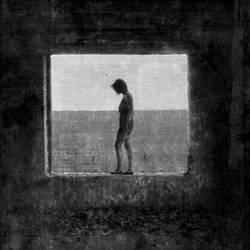 Window by deinitio