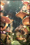 Inside the Mushroom Village