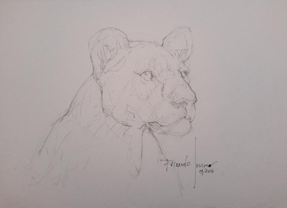 Gesture Drawing - Lioness by fernandoissamo