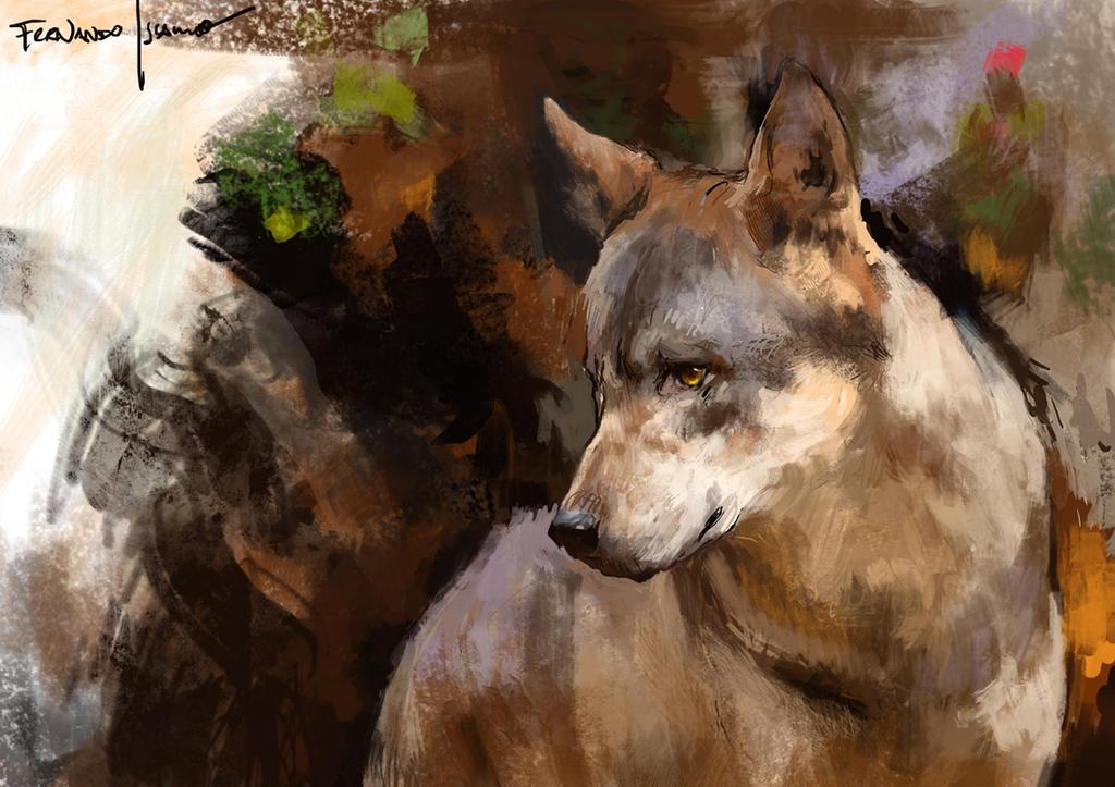 Wolf by fernandoissamo