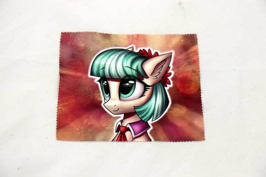 Coco Glasses Cleaning Cloth
