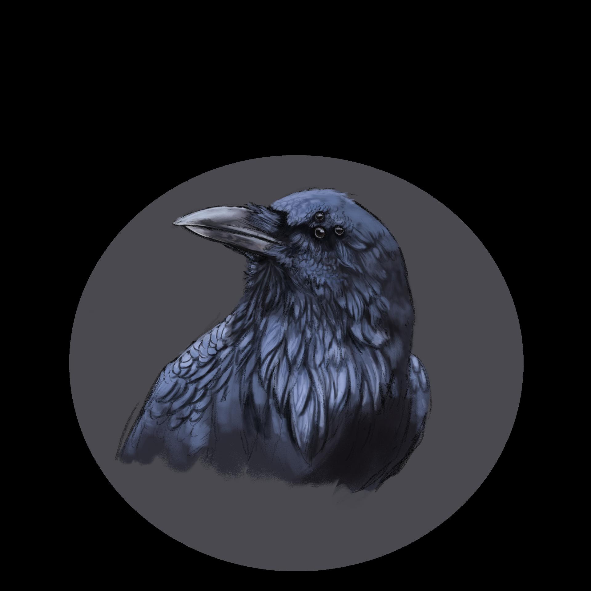 3 eyed raven