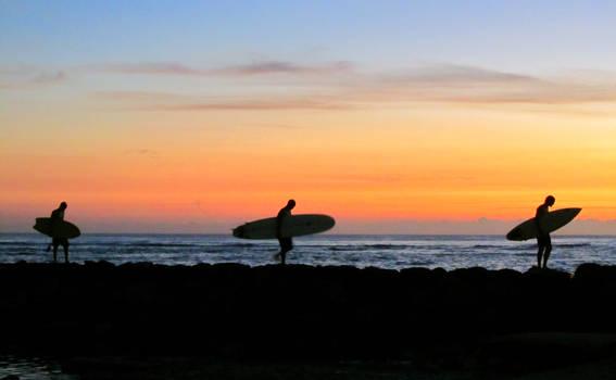 Hawaiian Surfers