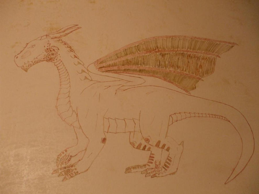 Dragon on my Bathroom wall by Sithwedgiebubba