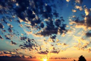 DREAM by Nendy