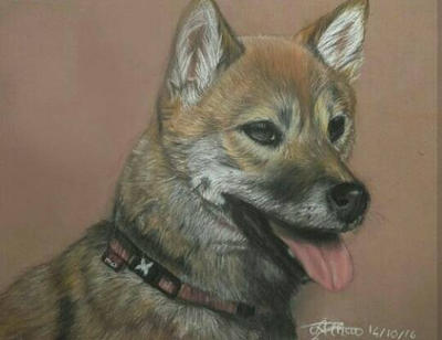 Dog drawing in soft pastel by AltheaWorld