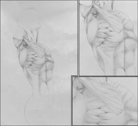 Study of statue by Orisek-Akinari