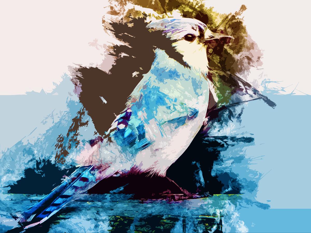 Handsome Bird by emiko42
