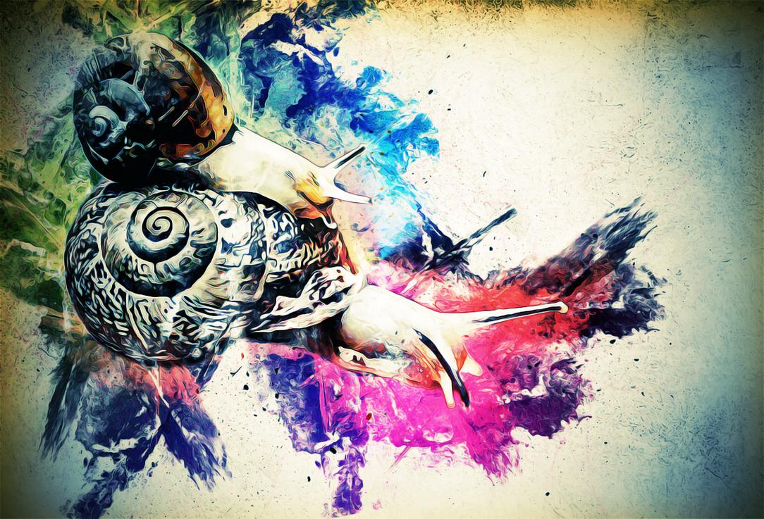 snailspace by emiko42