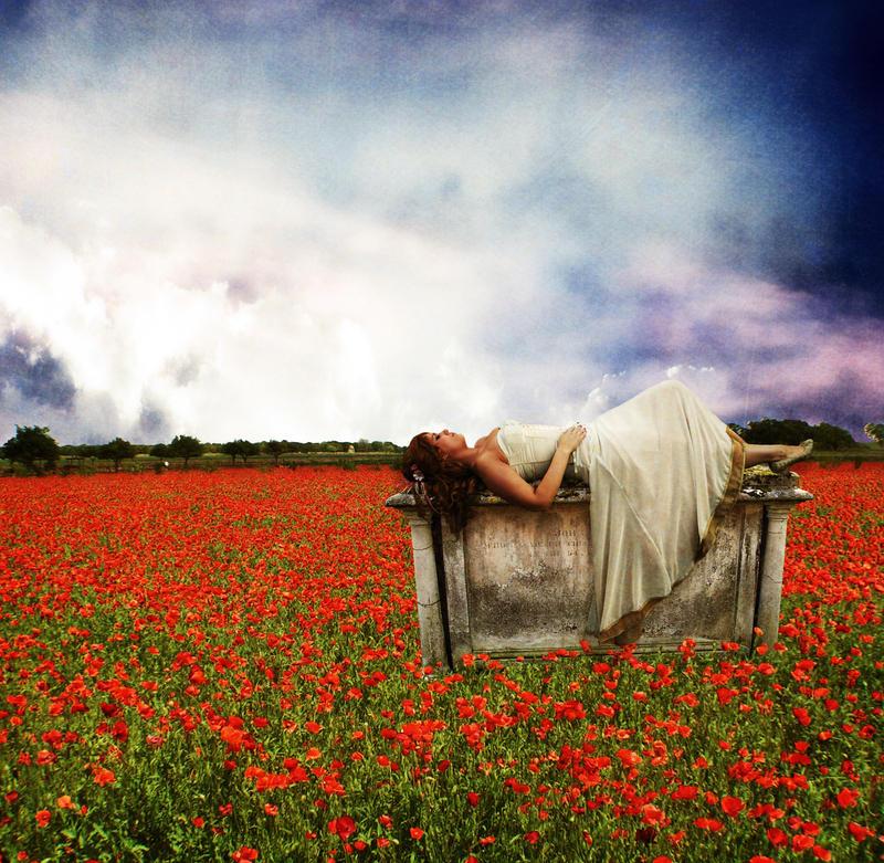 http://fc04.deviantart.net/fs49/i/2009/234/6/4/Falling_Asleep____by_Raederly.jpg