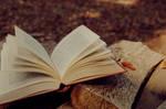Les pages au vent by Cumulonymbus