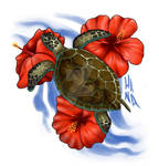 Turtle travelling