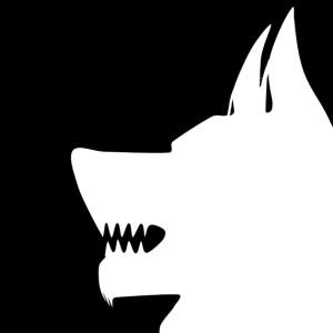 lobisticorodrigues's Profile Picture