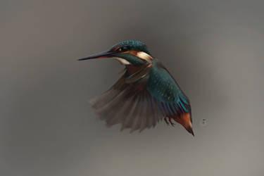 Bird by Lakmys