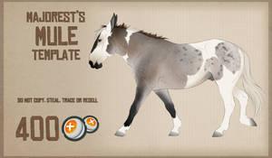 Mule   Template