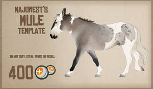 Mule   Template by Majorest