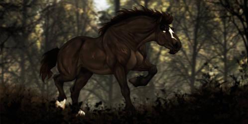 DIRPG | Zander | Unknown Stranger by Majorest