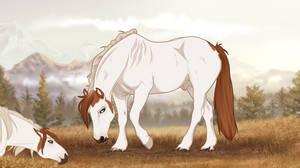 II | Evadyn | Lead Stallion