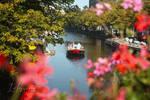 The Hague September