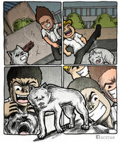 STOP ANIMAL CRUELTY by ACETAR-RATECA
