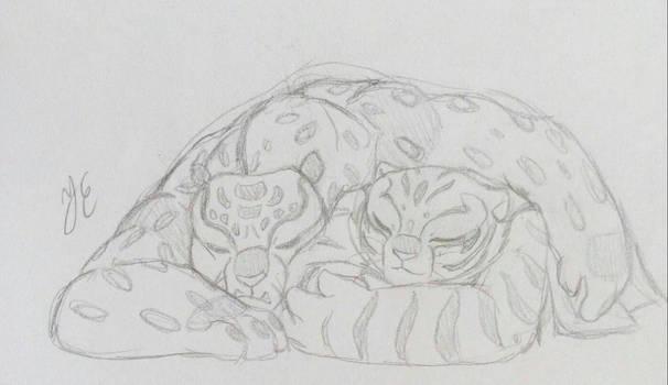 Tai x Tigress