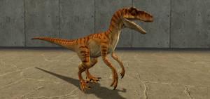 Velociraptor (1997) (Male)