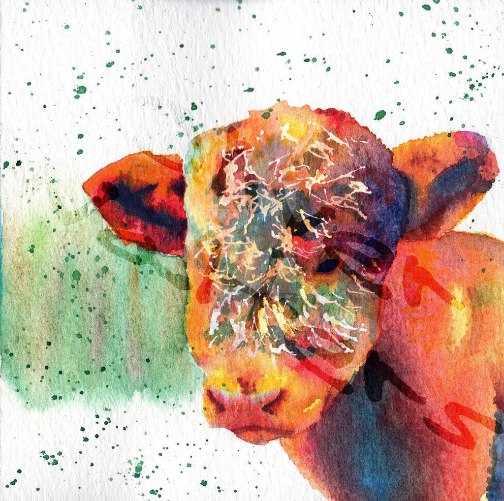 Highland Calf by Digital-Goth